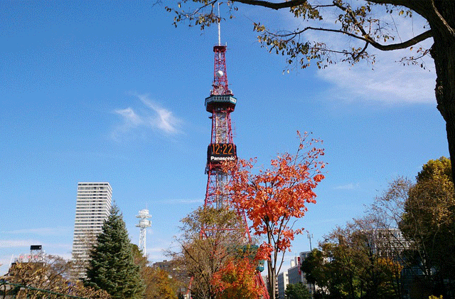 Sapporo TV Tower Observation Deck & Moiwa Yama Ropeway Ticket Set